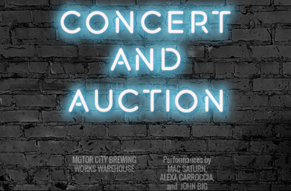FBD Auction and Concert 2019 (1)